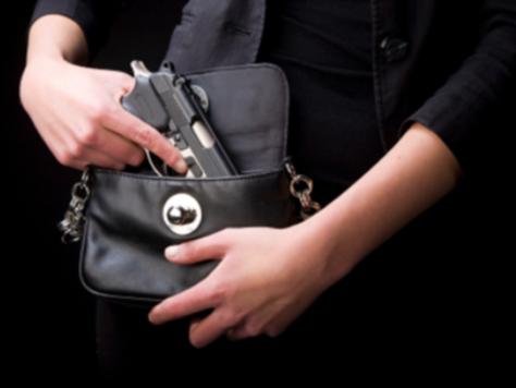 oruzje u torbi
